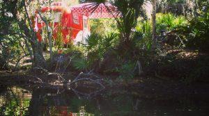 Tiny Red Caravan's visit to Oscar Scherer State park.